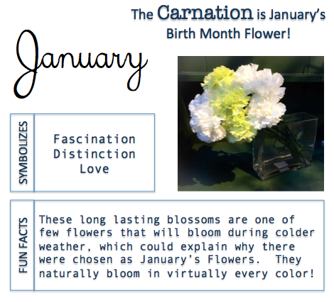 Birth Month Flower Birth month meanings, Birth month