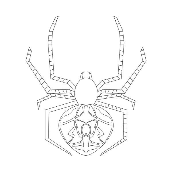 Pin On Spider Coloring Pages
