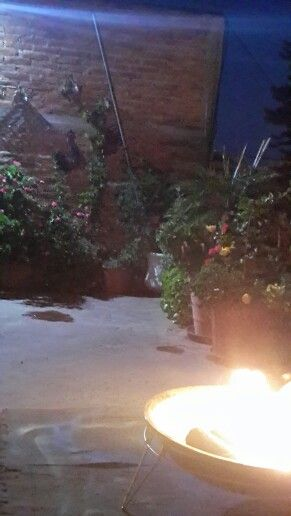 Jardín en la azotea, flores, macetas, fogata