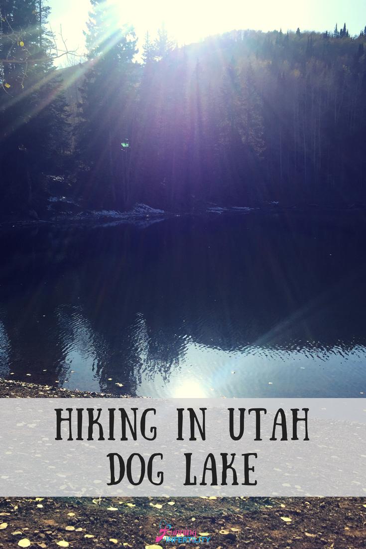 Things that are Hiking in Utah Dog Lake Utah hikes