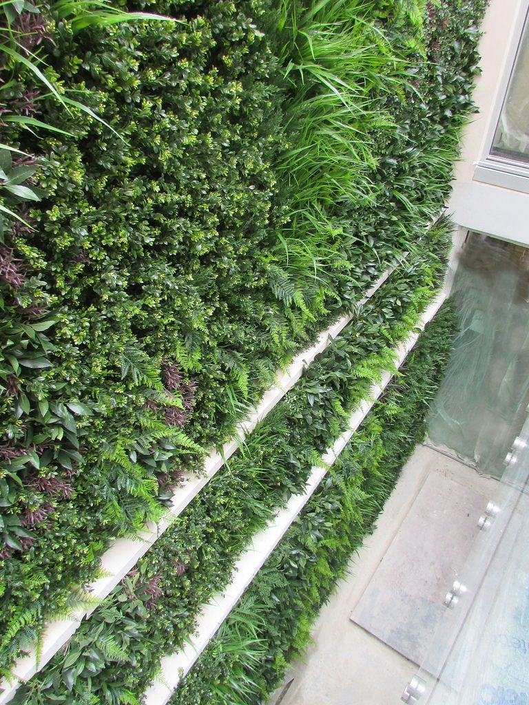 Incroyable Exterior Green Wall In Light Well
