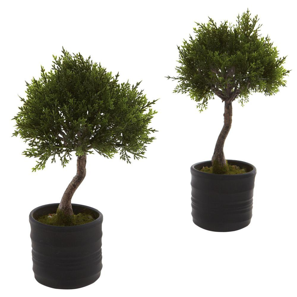 Nearly natural cedar bonsai trees with planter set of