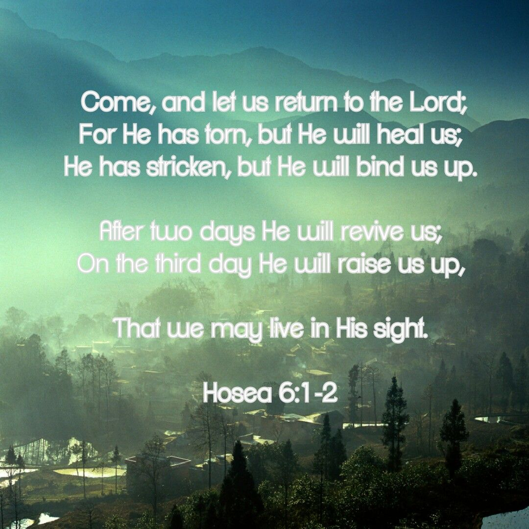 Hosea 6 1 2 Word Of God Scripture Words