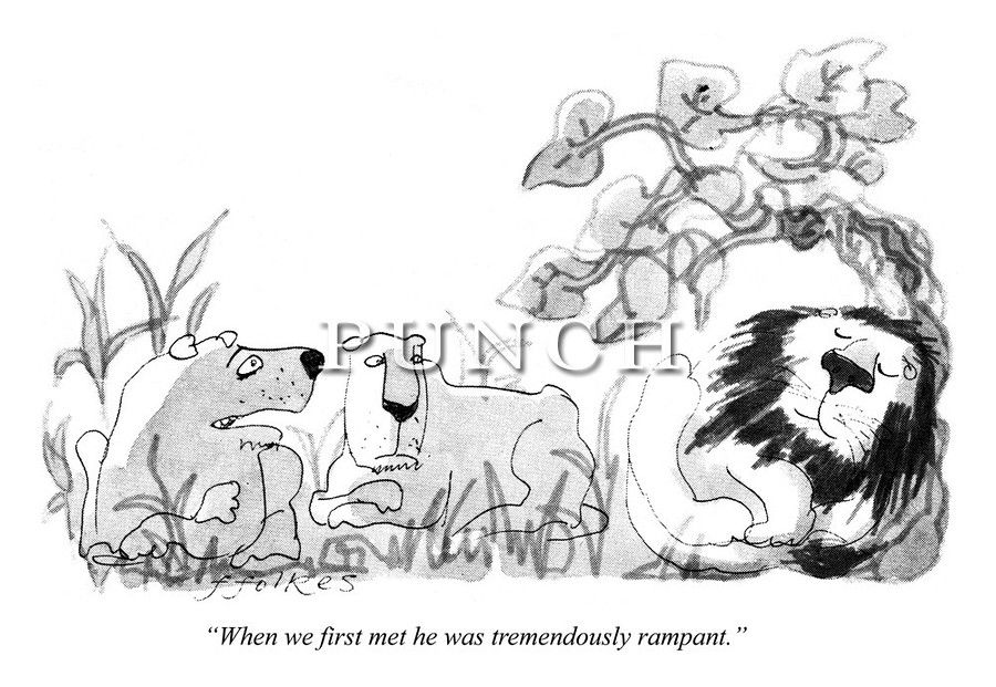 """One lioness to another:  """"When we first met he was tremendously rampant."""" Punch magazine cartoon by Michael ffolkes (Brian Davis)"""