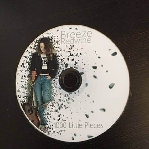 cd dvd printing copying printed disc printed insert music band