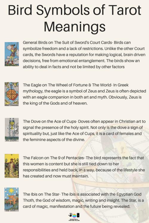 Meanings of Bird Symbols on Tarot Cards   Tarot Deck   Tarot
