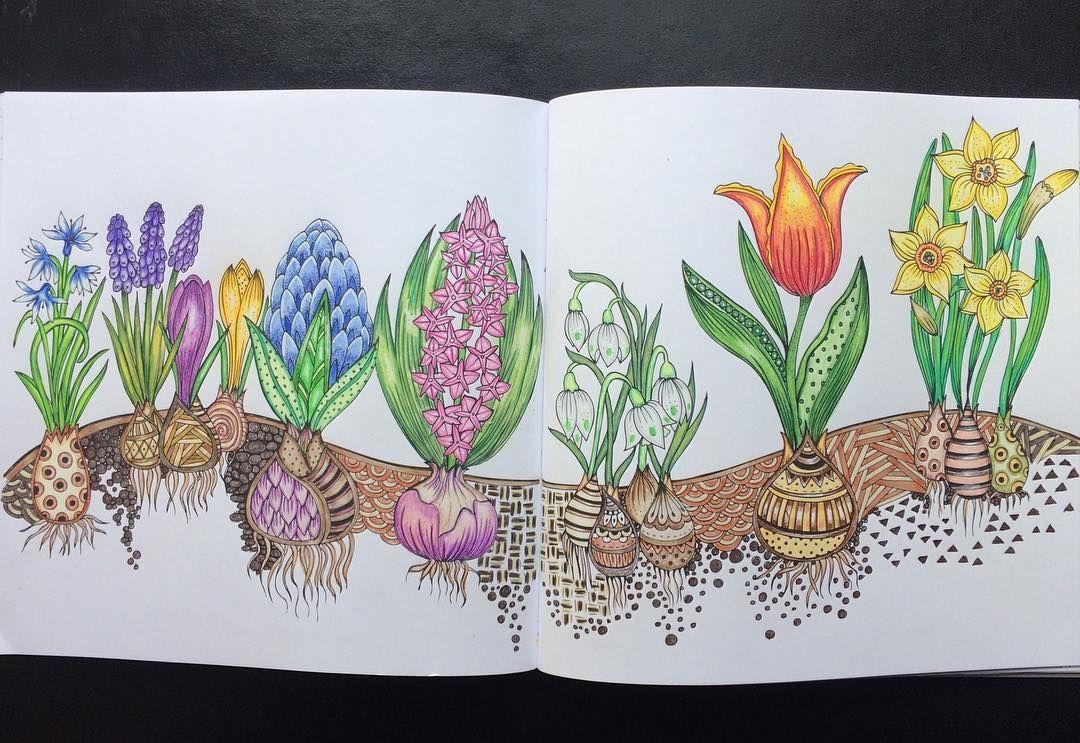 pin auf rita berman coloring books