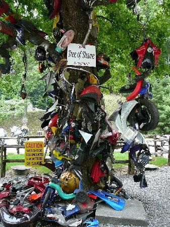 Tail Of The Dragon Tree Of Shame At Deals Gap Motorcyle Resort