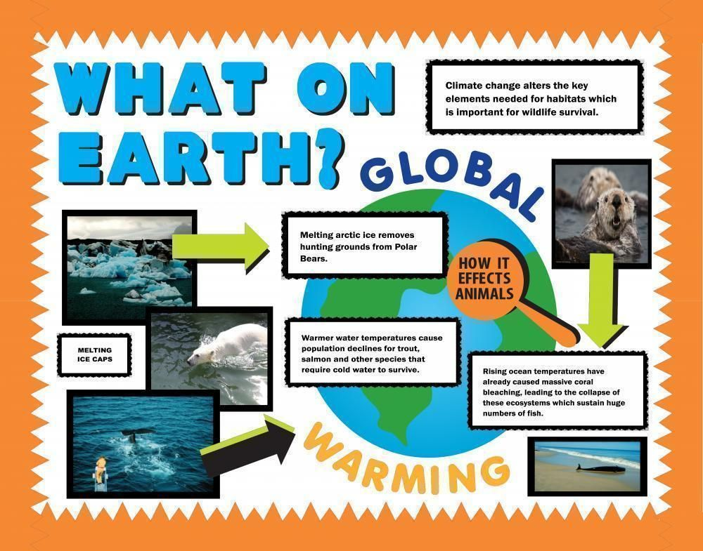 earth science projects for middle school An array of environmental and science based lesson plans, activities and ideas for k-12 celebrate earth day (scholastic) promote environmental awareness with these lessons, activities, and printables for grades 5-8.