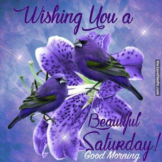 Positive Saturday Morning Quotes: Wishing You A Beautiful Saturday! Good Morning