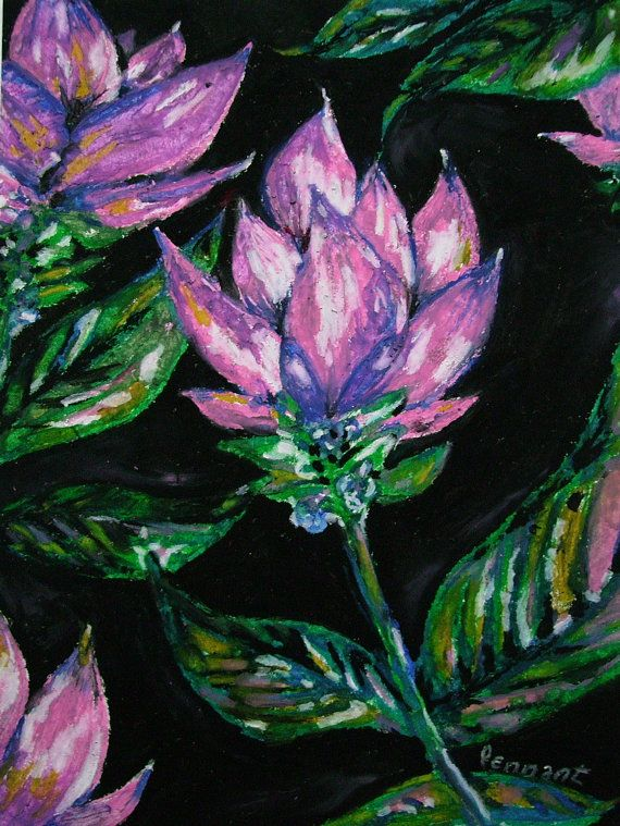 4af13810e66cb Pink Curcuma Lily Small Oil Pastel Flower Drawing by CapArtShop ...