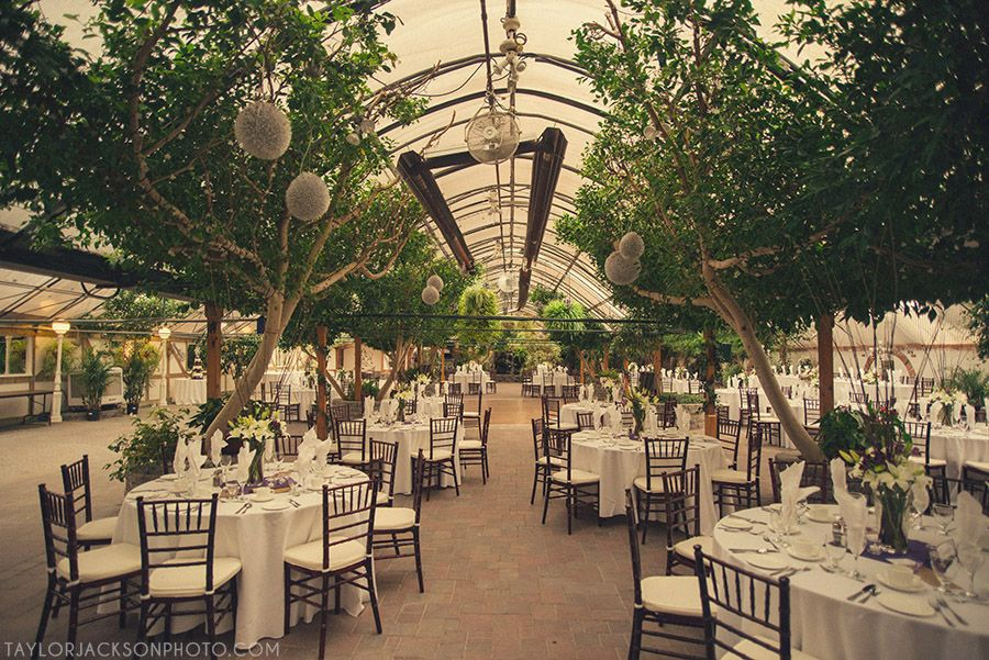 Iuliana And Brandon Were Married On Saturday Madsens Greenhouse In Newmarket This Was My First