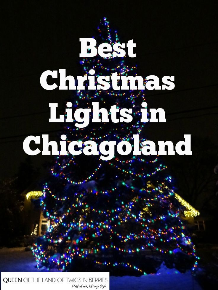 Best Christmas Lights in Chicagoland - Queen of the Land of Twigs 'N Berries - Best Christmas Lights In Chicagoland Happy Christmas Pinterest