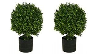 These Fake Boxwood Plants Will Add A Touch Of Elegance To Your Front Porch Faux Ball Topiary At Silk Tree Warehouse Company Today