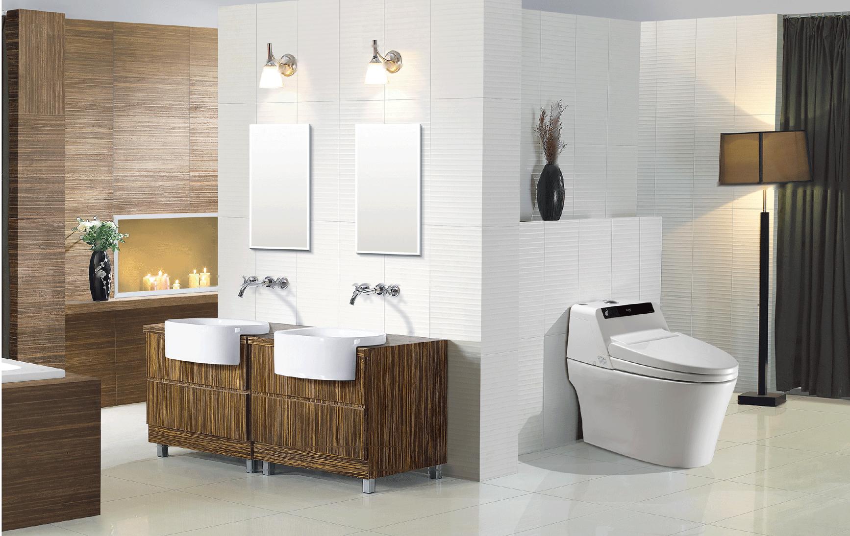 Saniwise Smart Toilet Intelligent Toilet Tankless Toilet Seat