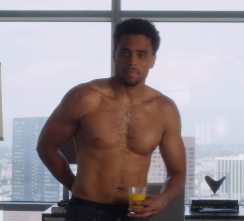 michael ealy halle berry