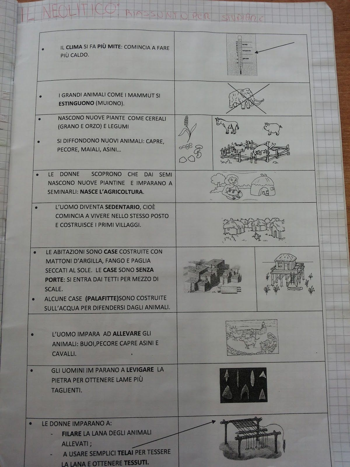 CLASSE PRIMA storia : albero delle stagioni PRIMA DOPO ...