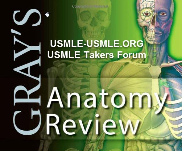 Download Grays Anatomy Review 1e 1st Edition Httpusmle Usmle