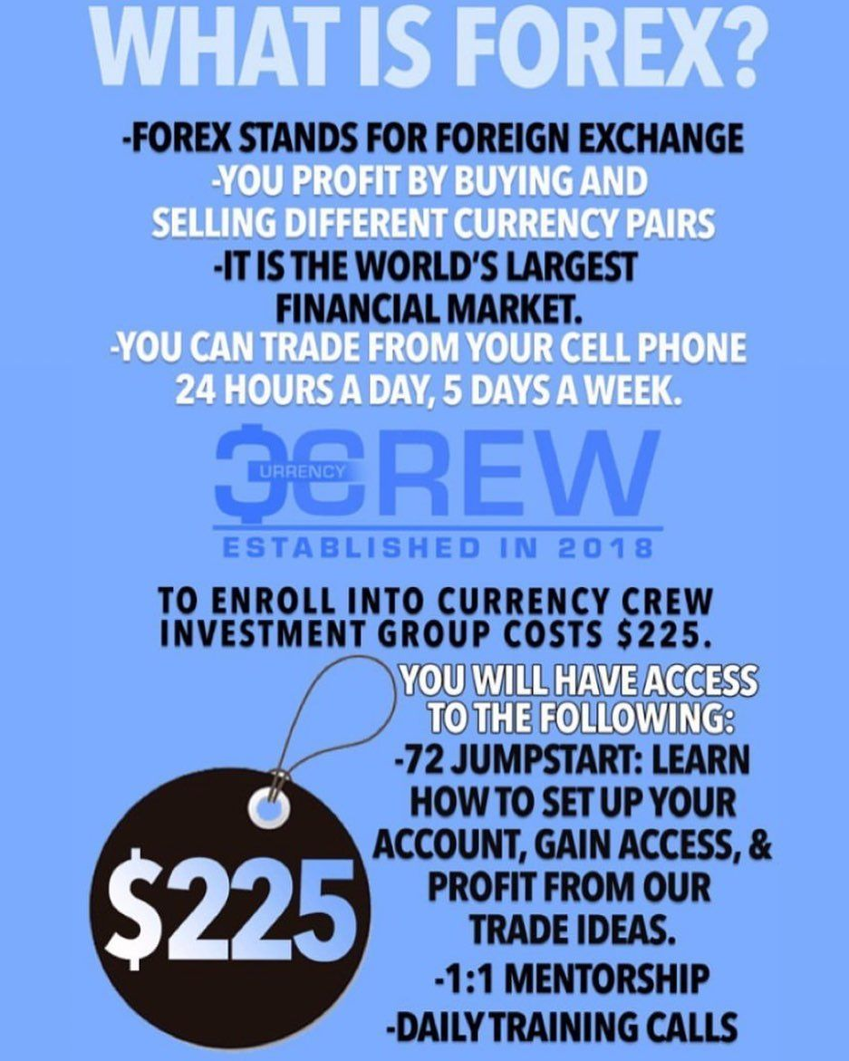 forex contact