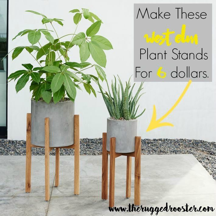 West Elm Inspired DIY Plant Stands is part of Diy plant stand, West elm inspired, Diy plants, Plant stand, Planter stand, Decor - mid century plant stands  West Elm has inspired millions and I'm here to grind out an easy, fool proof tutorial that anyone can do  Did you see what I said there  Anyone can do  So gear up and make this plant stand with me  SHOP LIST FOR WEST ELM INSPIRED PLANT HOLDERS  Fir 1 x 3  4 dowels silicone 4 screws stain or paint of choice varnish STEPS TO BUILD A WEST ELM INSPIRED PLANT STAND You want to make your cuts first  We also do a ligh…