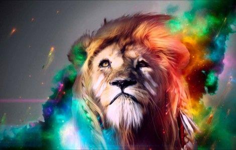 Lion Stage Hd Wallpapers 1080p Backgrounds Desktop Colorful Lion