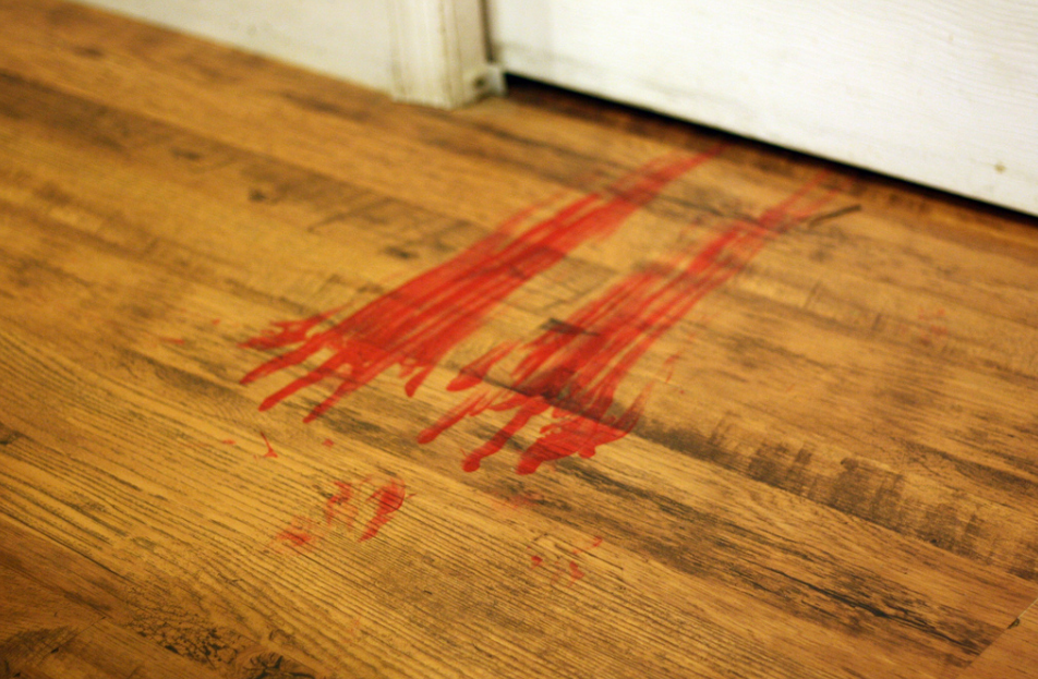 Are Period Panties Bloody Amazing? We want your verdict... lumps and all.