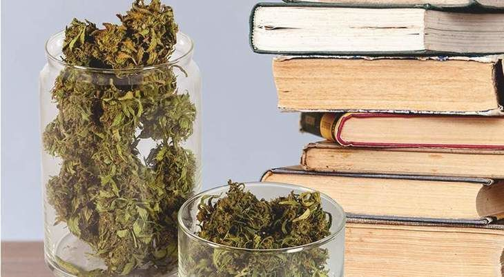 List of great books that feature marijuana.