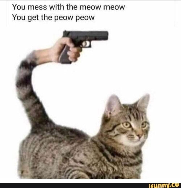 You Mess With The Meow Meow You Get The Peow Peow Ifunny In