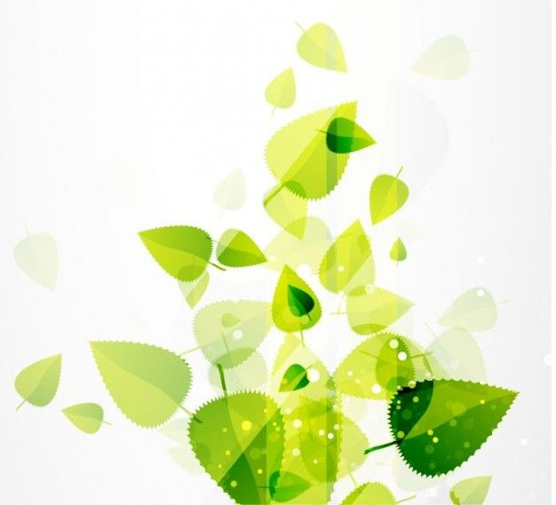 Abstract Green Leaves Vector Background Green Leaf