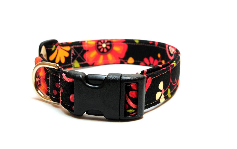 Adjustable Dog Collar -Black Fuschia Orange and Yellow Floral - Large