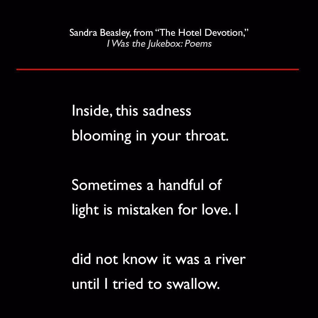 Sandra Beasley from The Hotel Devotion I Was the Jukebox: Poems #quote #poetry #lit #SandraBeasley #IWasTheJukebox