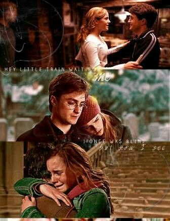 Harmione Forever Harry Potter Hermione Granger Harmony Harry Potter Harry And Hermione