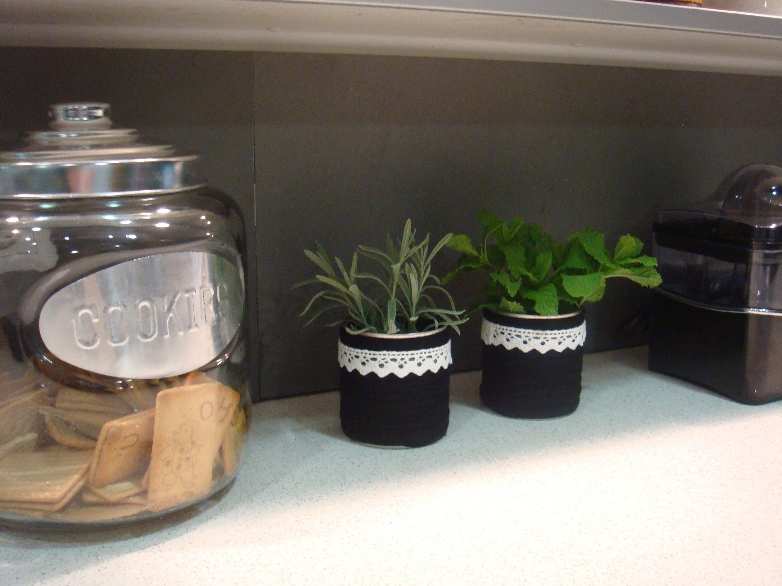 Funcionalidade: vaso com planta aromática