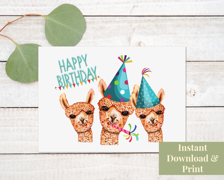 Alpaca Birthday Card Happy Birthday Card Digital Download Etsy Happy Birthday Cards Birthday Card Printable Birthday Cards