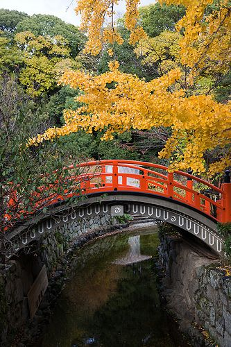 Kyoto. 京都 下鴨神社 Shimogamo Shrine, Kyoto by peace-on-earth.org, via Flickr