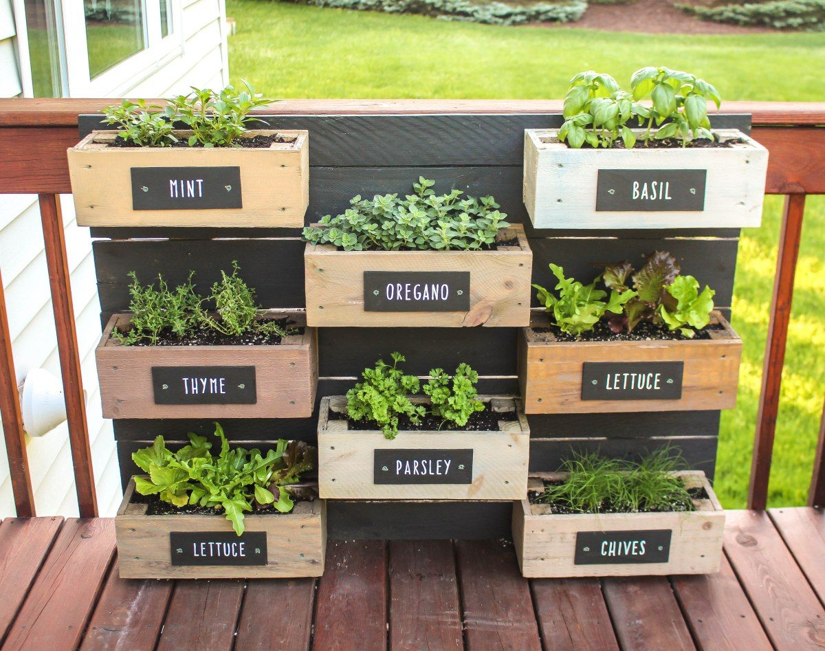 Herb Wall Planter Diy herb garden, Herb garden wall