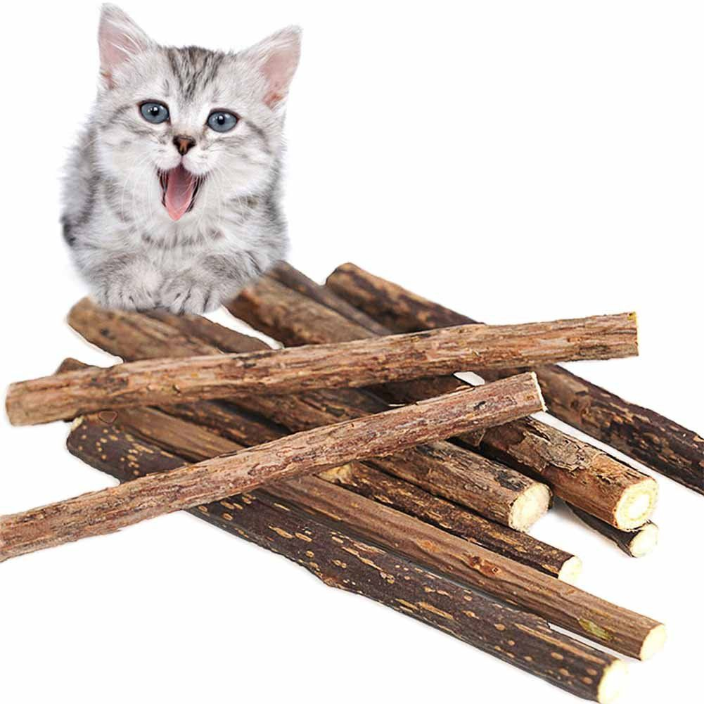 Vivoo Cat Teeth Grinding Chew Toy Catnip Stick Natural Matatabi 6 Pack Healthy Care Organic Silver Vine Bully Sticks For Cat Birthday Cat Birthday Party Cats