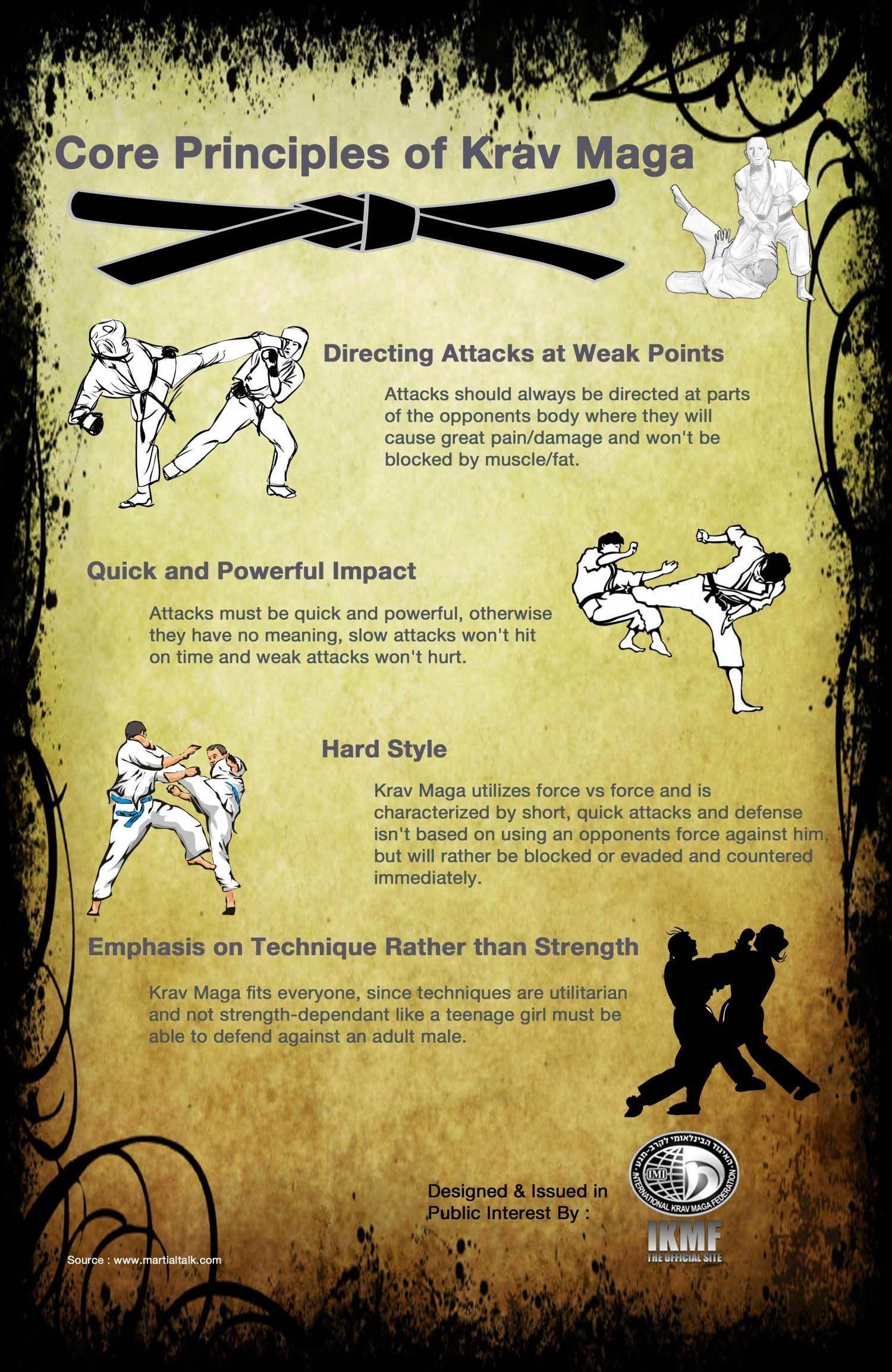 Infographic Core Principles of Krav Maga Infographics