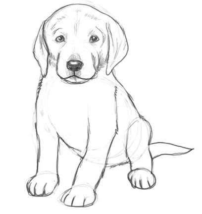dog drawings in pencil easy for kids sketch coloring page - Drawing Sketch For Kids