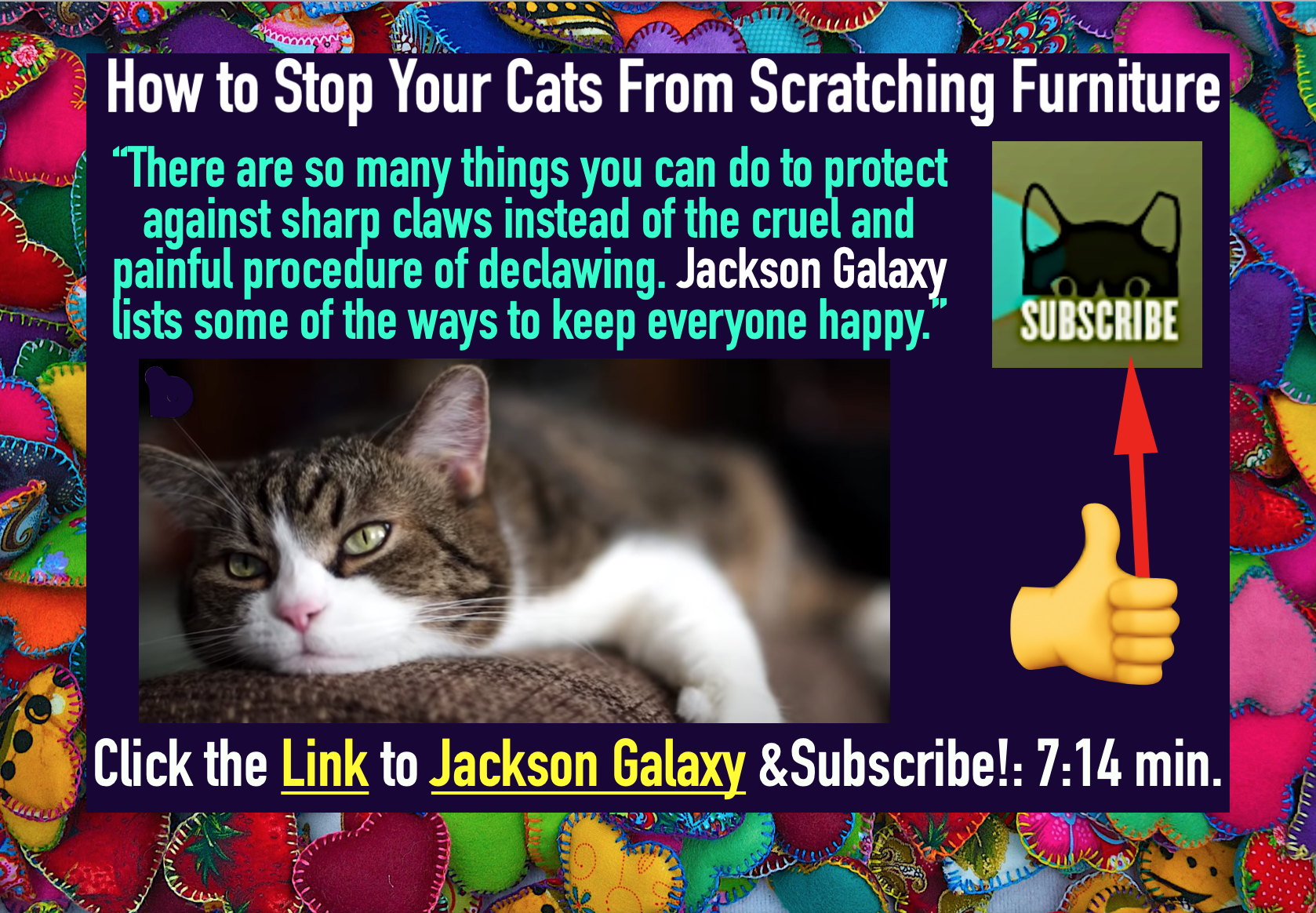 Jackson Galaxy Tips How To Stop Your Cats From Scratching Furniture Click The Link Subscribe 7 14m In 2020 Jackson Galaxy Furniture Scratches Feeling Happy