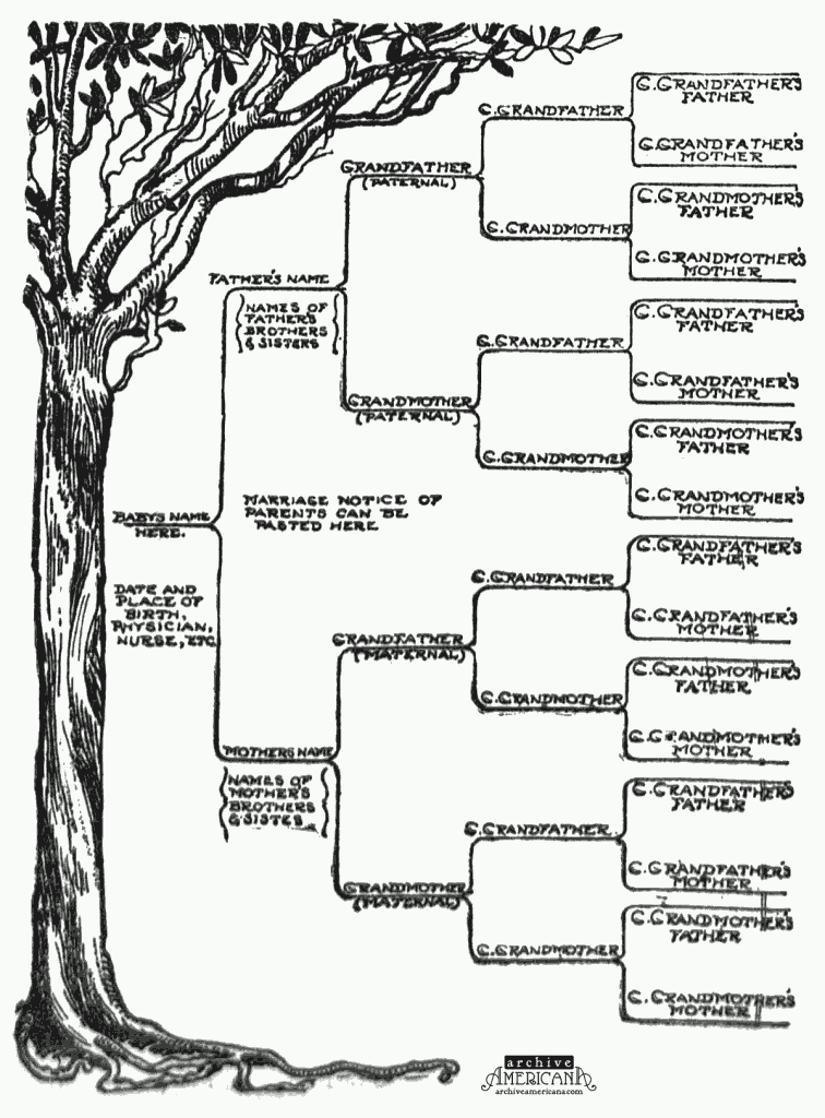 Start A Genealogical Record For Your Family 1905 Free Family Tree