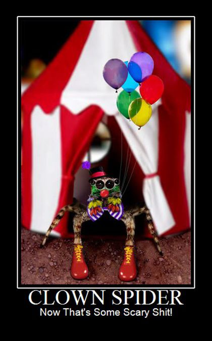 I actually LIKE clowns... am I the only one?