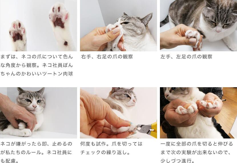 モノづくり Nekozuki ねこずき 猫用品の販売 猫用品 猫 かわいい猫