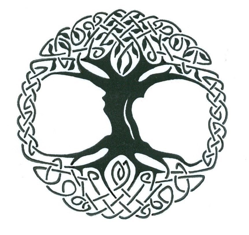 Details about Celtic Tree of Life Vinyl Window Sticker Decal Car ...