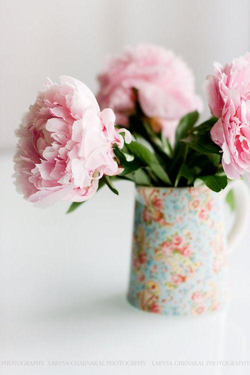 Carnations shabby chic