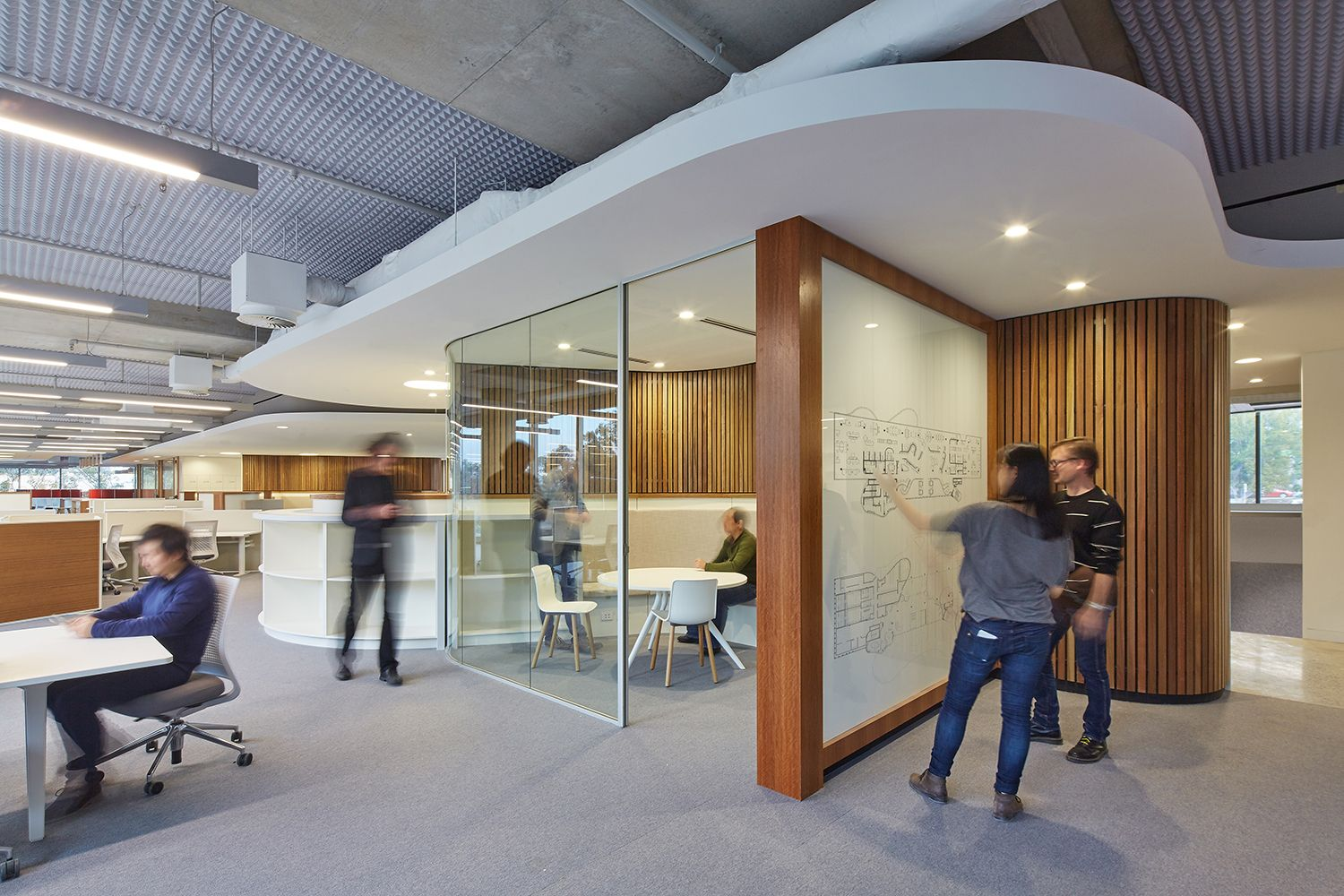 6014 novartis australia hq campus 1500 1000 for Experiential design sydney