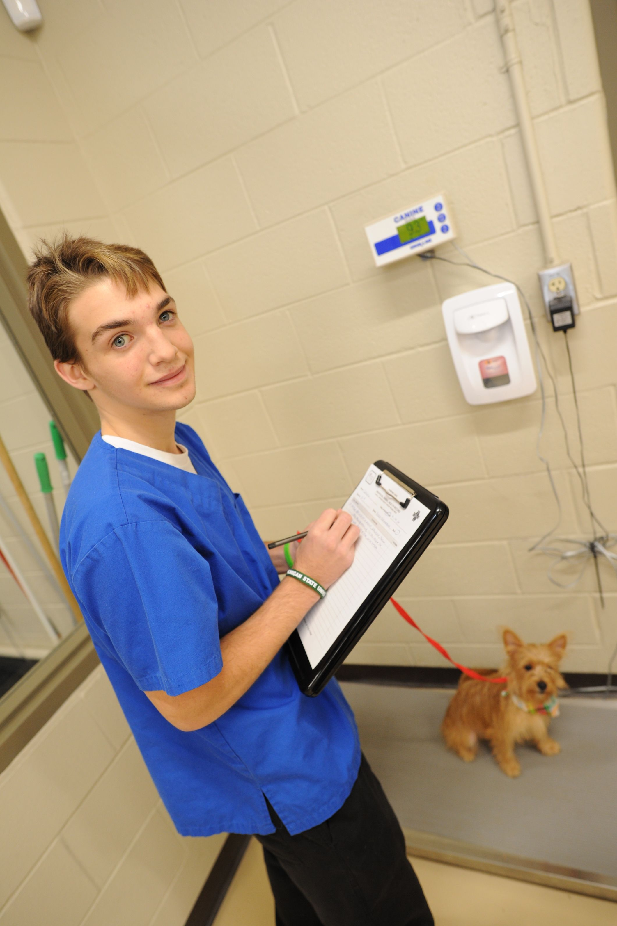 Great Oaks High School Veterinary Assisting Program Are You Looking