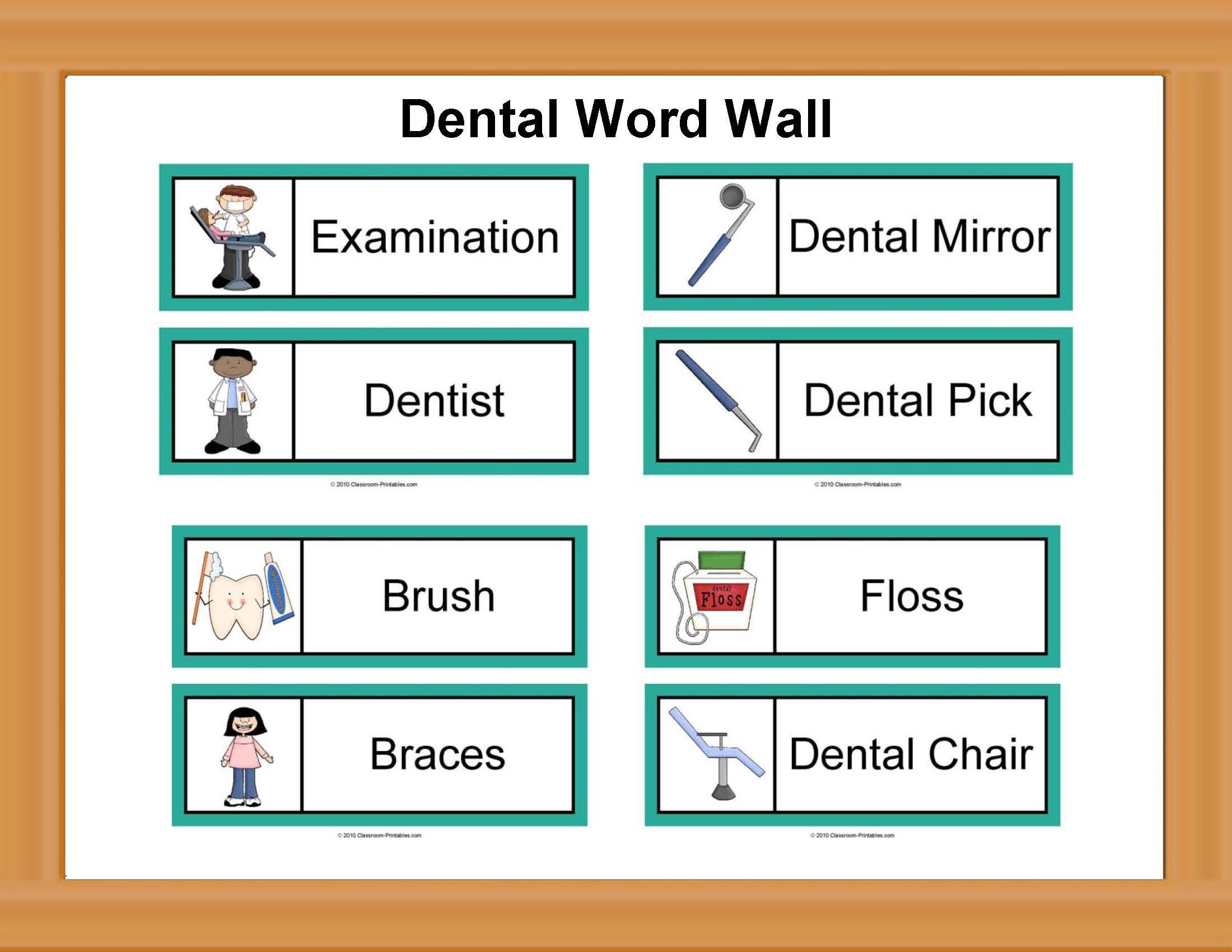 Dental Word Wall