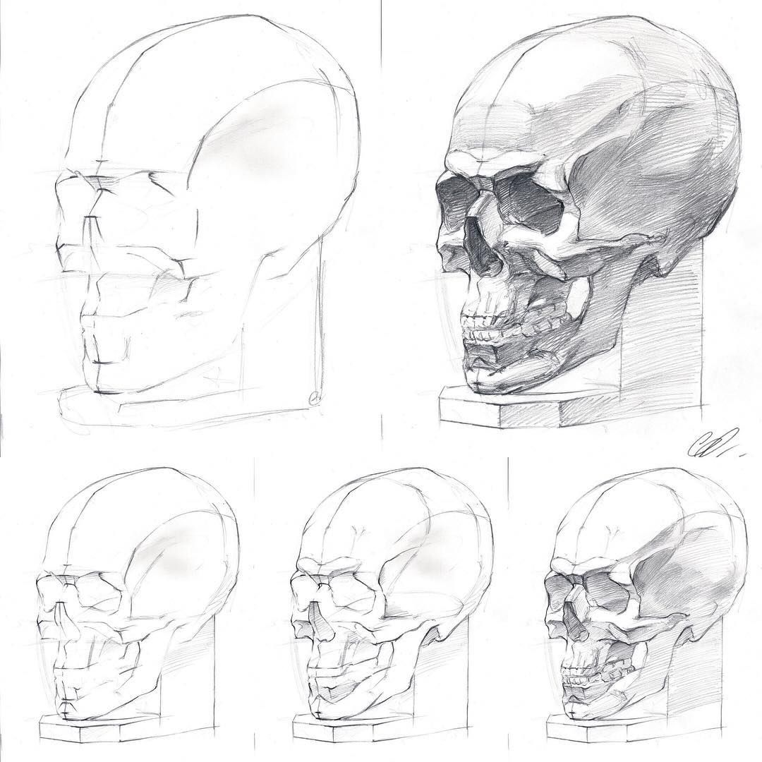 By @barbussergei How to draw a human skull, drawing tutorial ...