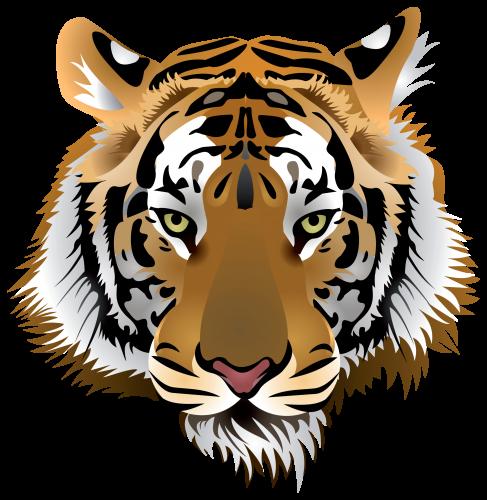 Tiger Head Png Clip Art The Best Png Clipart Tiger Images Tiger Face Tiger Art